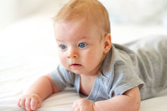 Quatro meses de bebê idoso Foto de Stock