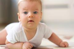 Quatro meses de bebê idoso Imagem de Stock