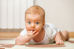 Quatro meses de bebê idoso Imagem de Stock Royalty Free