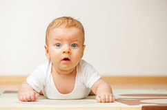 Quatro meses de bebê idoso Fotografia de Stock