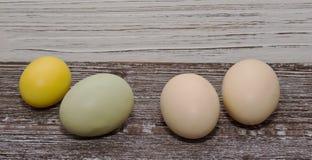 Quatro ovos da páscoa coloridos diferentes com um backgournd de madeira Fotos de Stock Royalty Free
