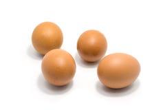 Quatro ovos isolados no fundo branco Fotos de Stock