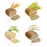 Quatro pães com fatias e orelhas do cereal Parte dois ilustração royalty free