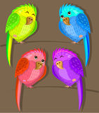 Quatro papagaios multi-coloridos nos ramos ilustração do vetor