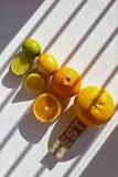Quatro partes de citrinos inteiras e partidas ao meio, com melhor da palavra, vi Imagem de Stock