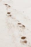 Quatro pegadas de um ser humano na areia da praia Foto de Stock Royalty Free