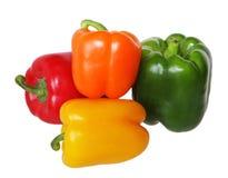 Quatro pimentas Imagem de Stock