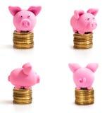 Quatro porcos cor-de-rosa pequenos em moedas Fotografia de Stock