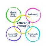 Quatro princípios do seguro ilustração royalty free