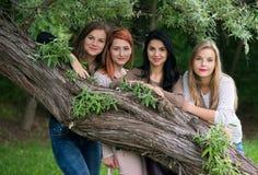 Quatro senhoras bonitas novas que levantam no parque Fotografia de Stock