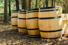 Quatro tambores de vinho de madeira na grama imagens de stock