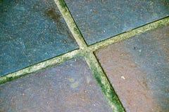 Quatro testes padrões e texturas quadrados das telhas do vintage Foto de Stock Royalty Free