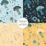 Quatro testes padrões sem emenda da mola com plantas, pássaros e borboletas Foto de Stock Royalty Free