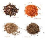 Quatro tipos de especiarias secadas Uma mistura das pimentas, cenouras secadas, coentro, sementes de cominhos Fundo isolado branc fotografia de stock royalty free