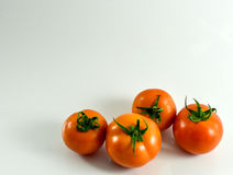 Quatro tomates no fundo branco Fotografia de Stock