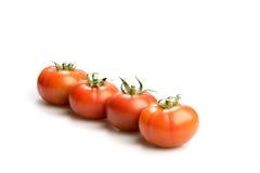 Quatro tomates vermelhos realísticos em uma linha isolada no fundo branco Imagens de Stock