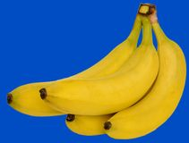 Quattro banane fotografia stock