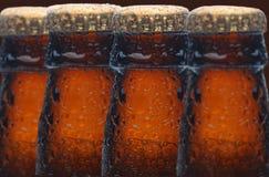 Quattro bottiglie di birra bagnate Fotografia Stock