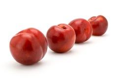 Quattro ciliege mature su un bianco Immagini Stock