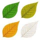 Quattro fogli del mosaico di autunno Fotografia Stock Libera da Diritti