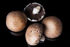Quattro funghi del fungo prataiolo sul nero da sopra Fotografia Stock Libera da Diritti