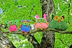Quattro gufi sull'albero Fotografia Stock