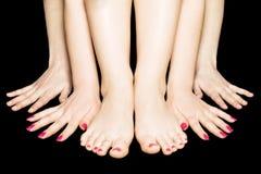 Quattro mani e due piedini Immagini Stock