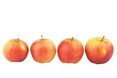 Quattro mele fotografia stock libera da diritti