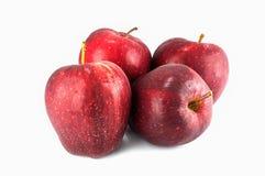 Quattro mele rosse fresche con le gocce isolate su bianco Fotografia Stock Libera da Diritti