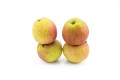 Quattro nature morte della mela su fondo bianco Fotografie Stock