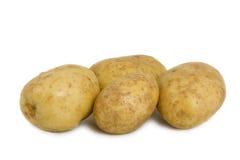 Quattro patate su priorità bassa bianca immagine stock libera da diritti