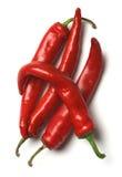Quattro peperoni di peperoncini rossi roventi Fotografia Stock