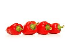Quattro peperoni di peperoncino rosso rosso Fotografie Stock