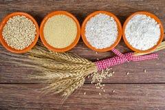 Quattro piccole ciotole con grano intero, cuscus, farina integrale, farina non specifica ed il covone delle orecchie del grano Fotografia Stock