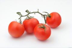 Quattro pomodori rossi lucidi Fotografia Stock Libera da Diritti