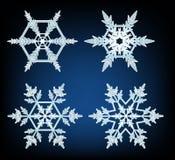 Quattro progettazioni dei fiocchi di neve su fondo blu Fotografie Stock