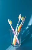 Quattro spazzolini da denti variopinti in un vetro Fotografia Stock
