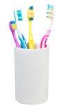 Quattro spazzolini da denti in vetro ceramico Immagini Stock Libere da Diritti