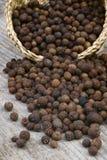 Quattro spezie (pimenta dioica) Fotografie Stock Libere da Diritti