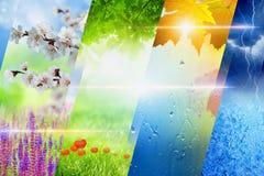 Quattro stagioni del collage di anno Fotografia Stock