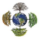 Quattro stagioni della terra del pianeta Fotografie Stock Libere da Diritti