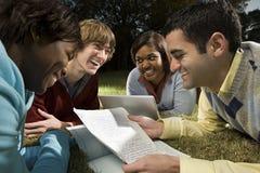 Quattro studenti che studiano all'aperto Fotografia Stock Libera da Diritti
