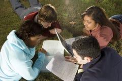 Quattro studenti che studiano all'aperto Immagini Stock Libere da Diritti