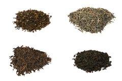 Quattro tipi di tè neri dell'elite isolati su bianco immagini stock