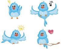 Quattro uccelli blu Fotografie Stock