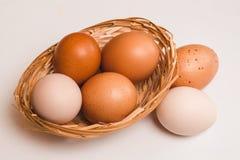 Quattro uova colorate del pollo in canestro marrone di vimini e due uova fotografia stock