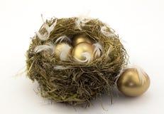Quattro uova di nido dell'oro Fotografia Stock