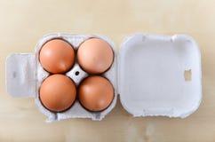 Quattro uova intere in contenitore dell'uovo Immagine Stock Libera da Diritti