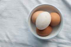 Quattro uova in tazza su tessuto Fotografia Stock