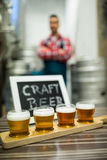 Quattro vetri della birra del mestiere sul vassoio del campionatore della birra Fotografia Stock
